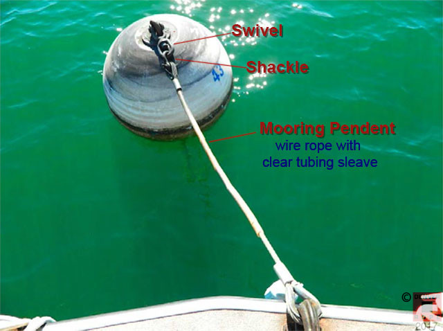 Mooring Pendants  Bridles  And Anchor Chain Snubbers